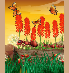 Nature scene with butterflies and ants on log vector