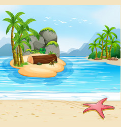summer island beach scene vector image