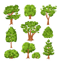 trees and green bushes set isolated on white vector image