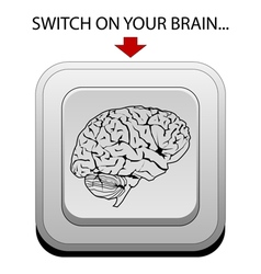 Switch on your brain vector image
