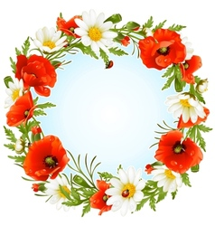camomile and poppy frame vector image vector image