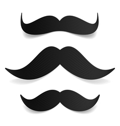Mustaches vector image vector image