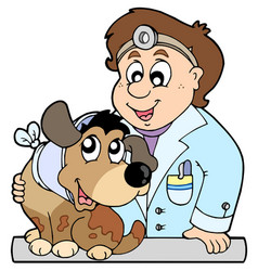 dog with collar at veterinarian vector image