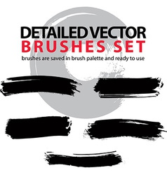 Set of grunge detailed hand-painted brushstrokes vector