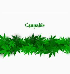 stylish cannabis background with marijuana leaves vector image