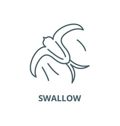 swallow line icon linear concept outline vector image
