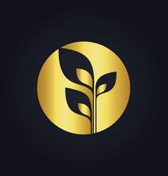 plant leaf gold tree ecology round logo vector image