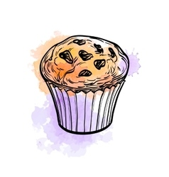 Muffin with raisins vector image vector image