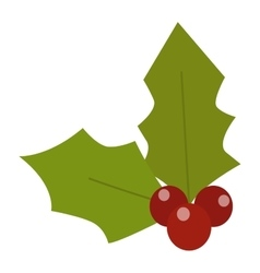 Christmas berry vector