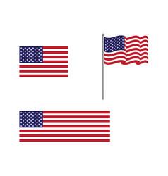 Flag american icon vector