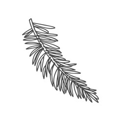 hand drawn pine tree vector image