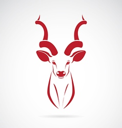 Image an kudu antelope horns vector