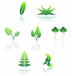 set of leaves icon vector image