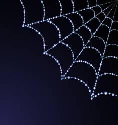 spider web illustration vector image vector image