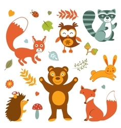 Cute forest animals colorful collection vector image vector image