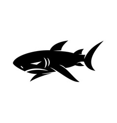 shark logo design isolated with modern vector image