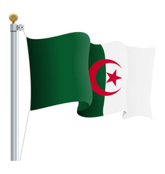 waving algeria flag isolated on a white background vector image