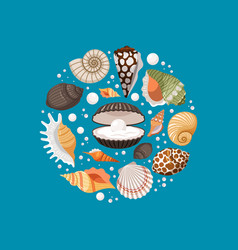 Cartoon sea shells round banner design vector