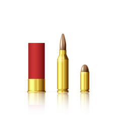 different types cartridges realistic bullet vector image