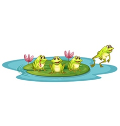 Frogs in the pond vector