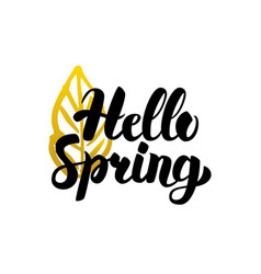 handwritten lettering hello spring vector image