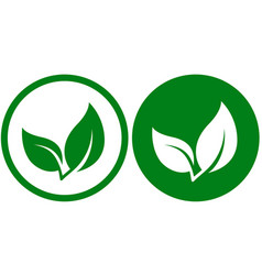Icon with green leaf vector