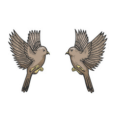 sparrow birds tattoo color sketch engraving vector image