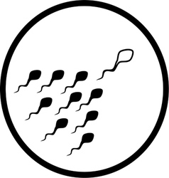 Spermatozoid icon vector