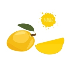 Yellow mango isolated on white background vector image