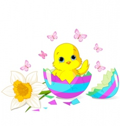 Easter chick surprise vector image vector image
