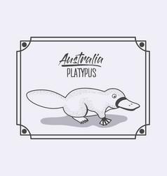 Australia platypus frame in monochrome silhouette vector