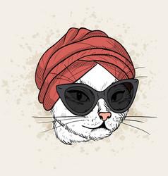 Color set of elegant cat woman face vector