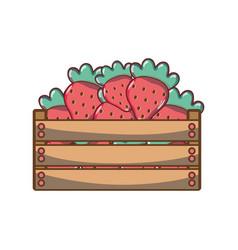 delicious strawberries fruits inside basket vector image