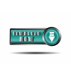 Download Now Button icon vector