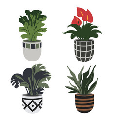 hand drawn flower pots home garden collection vector image