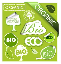 organic elements vector image