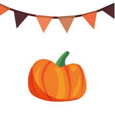 Pumpkin and garland decoration white background vector