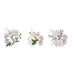 set vintage floral bouquets with apple blossom vector image