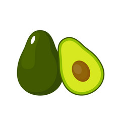 Avocado on a white background isolated vector
