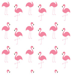 Flamingo set seamless pattern exotic tropical vector