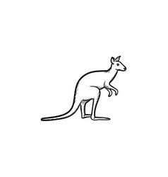 kangaroo hand drawn sketch icon vector image