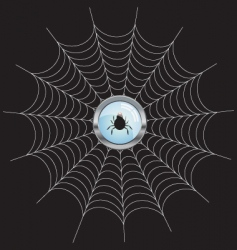Net with spider icon vector