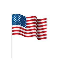 Usa flag isolated vector