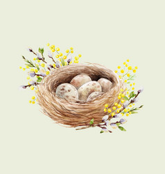 Watercolor bird nest with eggs vector