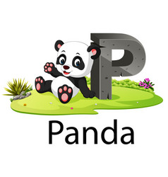 Zoo animal alphabet p for panda vector