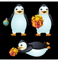 Three fun penguins with Christmas ball and gifts vector image