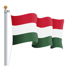 waving hungary flag isolated on a white background vector image vector image