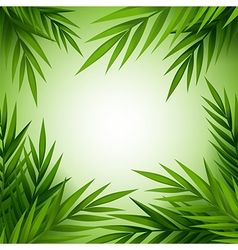 Tropical palm tree background vector image