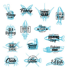 fishing season fisher sport camp lettering vector image