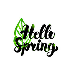hello spring green inscription vector image